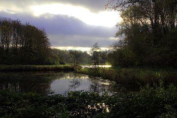 Natuurfoto von Leonie Vreeswijk-Feith