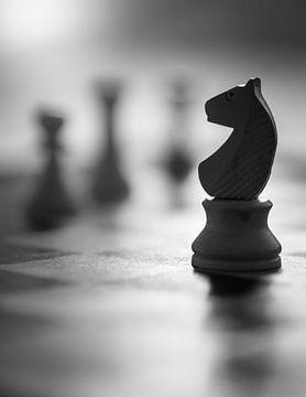 Schachfigur von Karel Ton