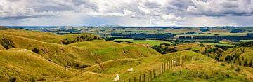 panorama Noordereiland, Nieuw Zeeland van