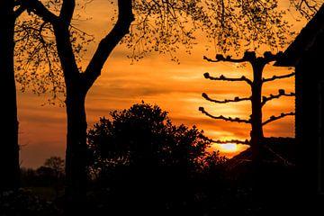 Silhouet avondzon op de boerderij van Marcel Runhart
