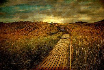 Auf dem Weg zum Strand von Hannes Cmarits