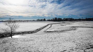 Sneeuw in de uiterwaarden van Sander Eggen