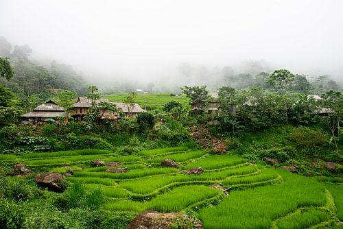 Bergdopje met rijstvelden in Pu Luong, Vietnam