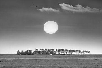 De zon en de skyline van het kleine Friese plaatsje Laaxum in zwart-wit von Harrie Muis