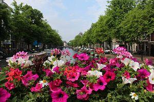 Bloemen in Amsterdam