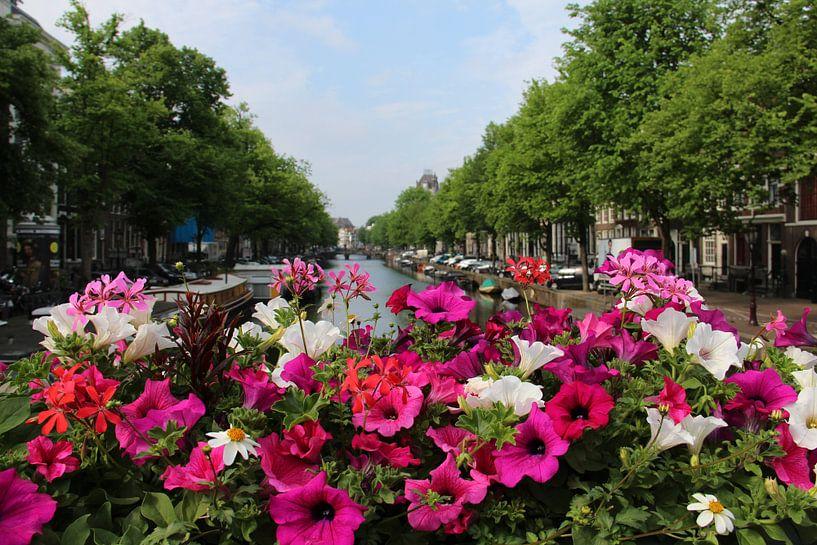 Bloemen in Amsterdam van Anouk Davidse