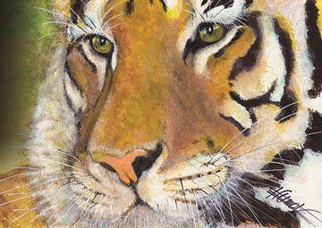 Tiger von Bojan Eftimov
