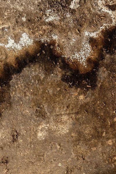 abstract lijnenspel van Martzen Fotografie