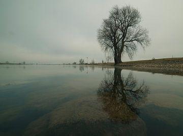 de IJssel van Hans de Rooij