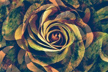 Tanz der Rosenblütenblätter von Anna Marie de Klerk