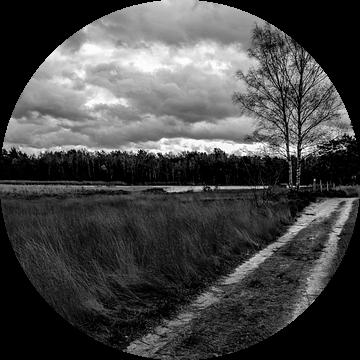 Heide. van Arne Claessens