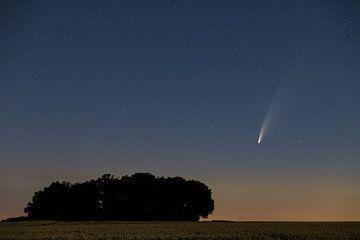 La comète Neowise sur Ronny Rohloff