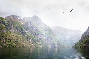 Der Naeroy-Fjord im Nebel, Norwegen von Dennis Claessens