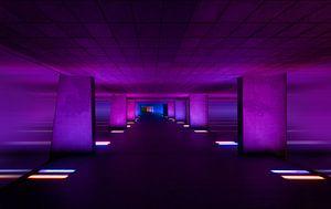 Purple Planet / Rotterdam