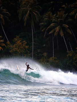Paradise Surf van Ward Jonkman