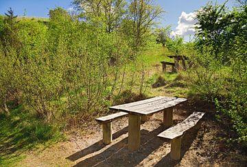 Picknicktisch von BVpix