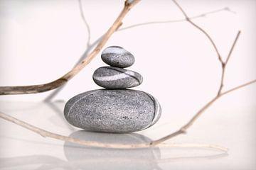 Équilibre van Martine Affre Eisenlohr