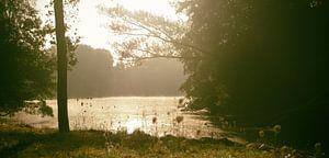 Op een mistige zonnige ochtend aan het water van