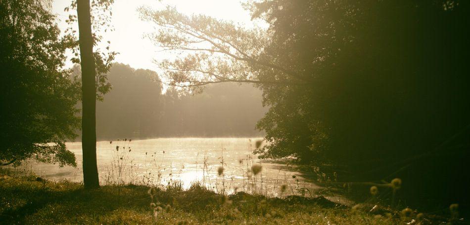 Op een mistige zonnige ochtend aan het water