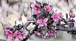 Japanische Kirschblüte