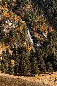 Waterval omring door bomen in de herfst van Hidde Hageman