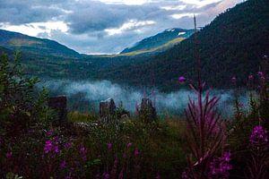 Noorwegen landschap