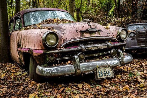 Old beauty