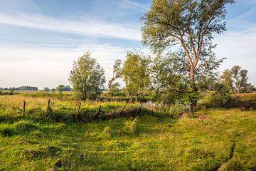 Oud hek in kleurrijk Nederlands landschap van Ruud Morijn