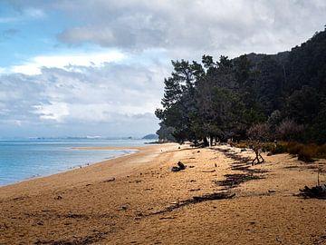 Een strand van Abel Tasman National Park in Nieuw-Zeeland van Rik Pijnenburg