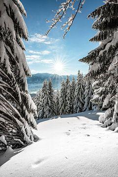 Vue d'hiver dans l'Allgäu sur Leo Schindzielorz