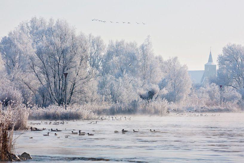Winter langs de IJssel van Evert Jan Kip