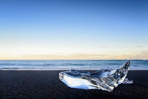 IJsvorm op het lavastrand van Jokulsarlon in IJsland