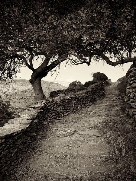 Cyclades, Greece - Hiking on the island of Amorgos van Alexander Voss