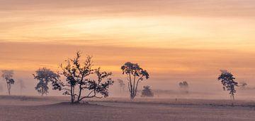 Sonnenaufgang in den Drunense Dunes von Rob Bout