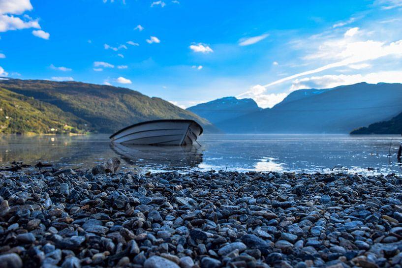 Prachtig Roldal, Noorwegen van Dick Hooijschuur