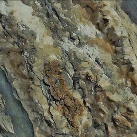 Het Beest in Zout - Abstract - Figuratief - Haliet - Zoutafzetting - Schilderij van Schildersatelier van der Ven