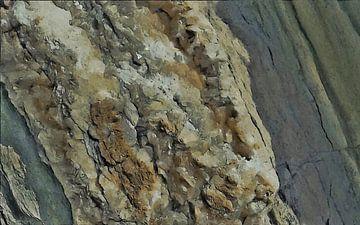 La bête en sel - Abstrait - Figuratif - Halite - Dépôt de sel - Peinture