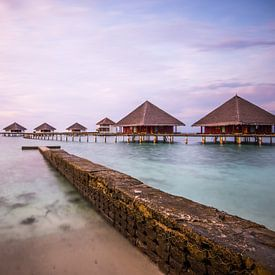 good morning paradise van Hannes Cmarits
