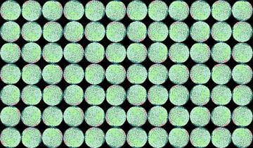 Groene Cadans