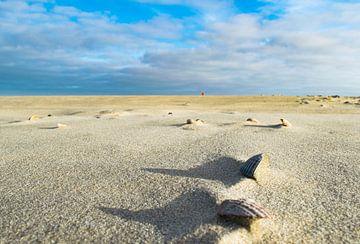 De ruimte op het strand von Dick Hooijschuur