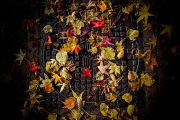Herfst schilderij op straat van