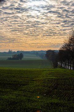Bunte Sonnenaufgang an einem nebligen Morgen unter den Wiesen im Herbst von Kim Willems