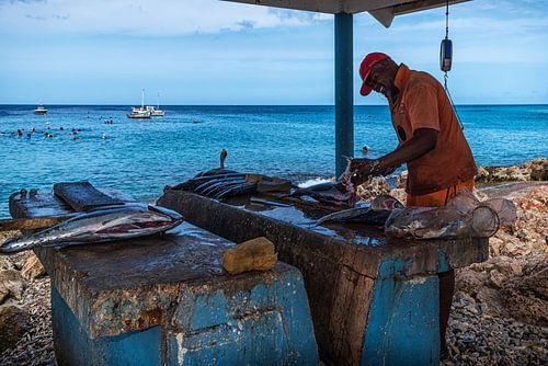 Visser aan het werk op Curaçao van Bart De Brabander