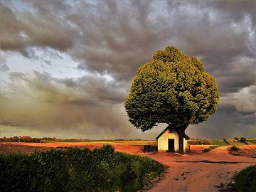 Het wit kappeletje onder een prachtig wolkendek von Maarten Honinx