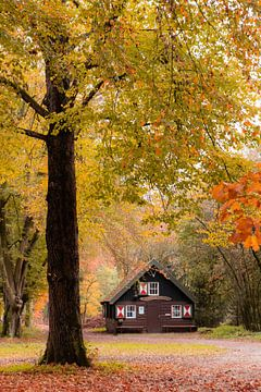 Die Hütte im Herbstwald Zeist Austerlitz! von Peter Haastrecht, van