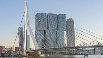 Erasmus-Brücke in Rotterdam von Jessica Lokker