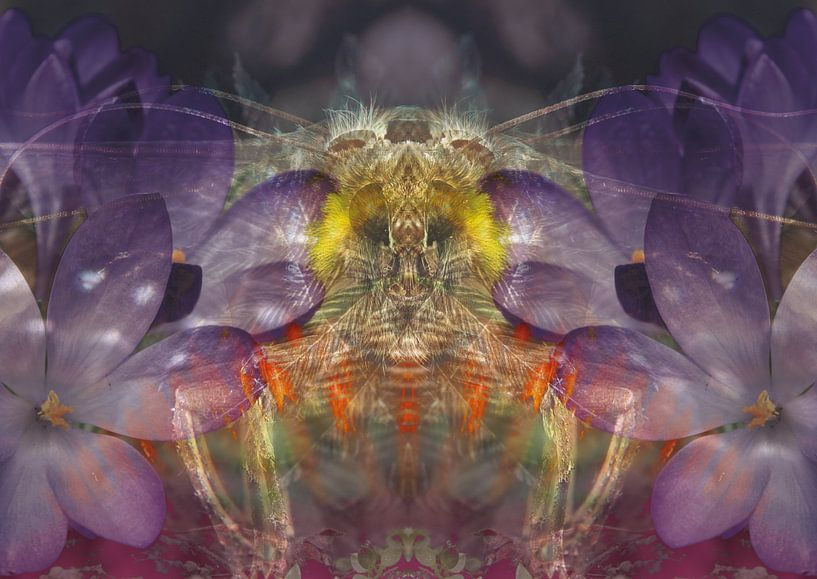 Leben zwischen den Blumen von Andreas Schulte