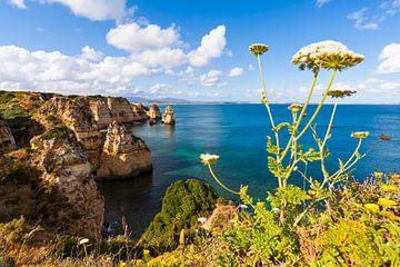 Kust bij Ponta da Piedade in de Algarve van Werner Dieterich