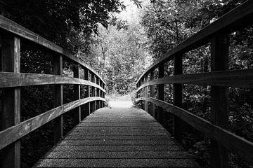 Il y a toujours de la lumière à la fin du ..... pont sur Fotografie Jeronimo