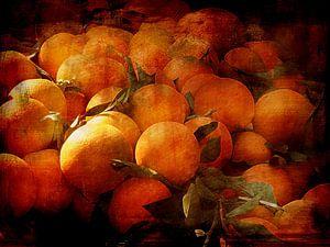 Sinaasappels - Tijd van Claudia Gründler